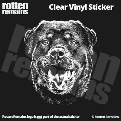 "Rottweiler 5"" Clear Gloss Decal Sticker Rottie Dog Sign Art K9 Print Canine L44"