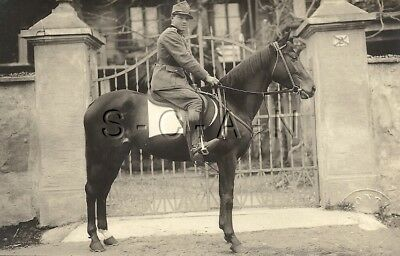 WWI Italian Large Real Photo PC- Army- Cavalry- Soldier- Uniform- Hat- Horse