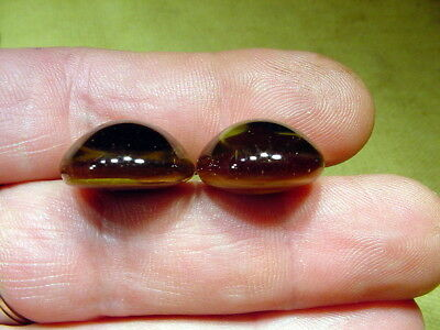 a pair vintage solid Glass Eyes size 19 mm teady bear taxidermy age 1910 A. 1184