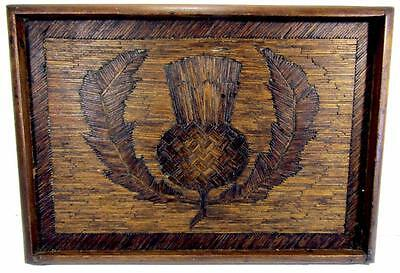 Vintage Tray Scotch Thistle Matchstick Hand Crafted Art 39 x 27 cm