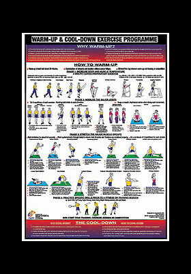 Professional Fitness Wall Chart WARM-UP AND COOL-DOWN Workout Wall POSTER