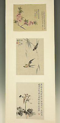 "CHINESE HANGING SCROLL ""Flowers and Birds""  @e659"