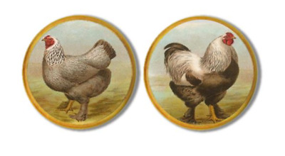 Vintage Rooster | Hen Drawer Pull - Country Farmhouse Decor, Cabinet Knobs