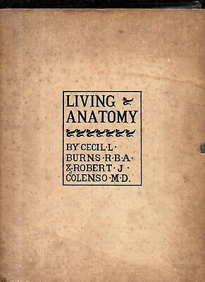 original 1900 Living Anatomy by Cecil L Burns & Robert Colenso 40 loose plates