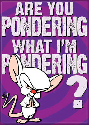 Pinky and the Brain Animated TV Series Gee Brain What To Do Refrigerator Magnet