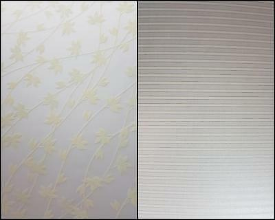 A4 Designer Stripe Paper Pinstripe Pearl & Translucent Vellum Ivy Frost 10 Pack