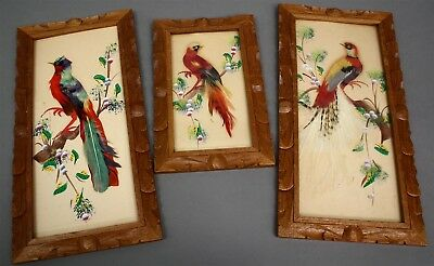 Vintage HANDMADE in MEXICO FRAMED PARROTS Real Feathers & Handpainted
