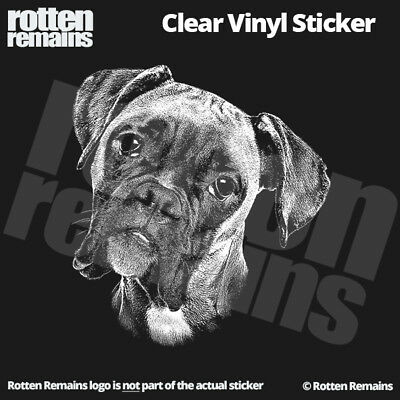 "Boxer 5"" Clear Gloss Decal Sticker Window Dog Sign Window Art Print Canine L44"