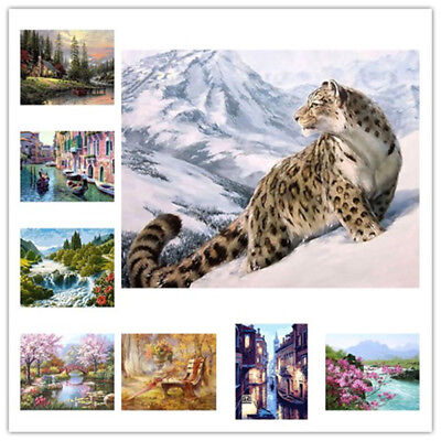 Various Digital Oil Painting Kit Paint by Numbers on Canvas Scenery Home Decor