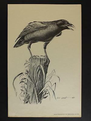 LOT of three 1976 WESTERN ARTIST BOB DALE 11 x 17 PRINTS of RAVEN~CROW