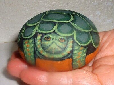 Green Painted Turtle Wildlife !  Painted Rock -Home, Patio, Yard Art !  V. Allen