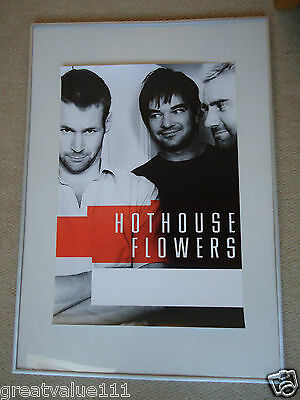 Hothouse Flowers Concert Gig Poster 1988 Unreleased Printers Poster 28 Years Gem