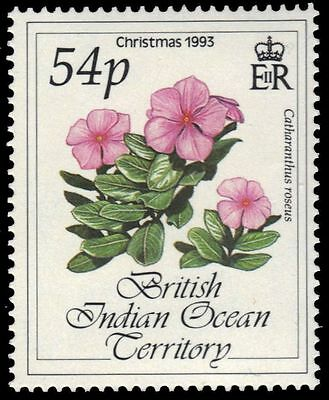 """BR INDIAN OCEAN 144 (SG144) - Christmas Flowers """"Catharanthus roseus"""" (pa16242)"""