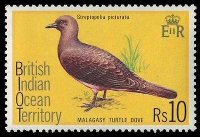 BR INDIAN OCEAN 77 (SG76) - Malagasy Turtledove (pa16235) BIOT