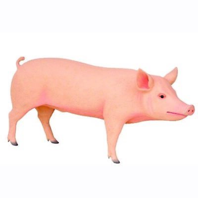Pig Standing Full Size Resin Statue Farm Countryside Decor Prop Display