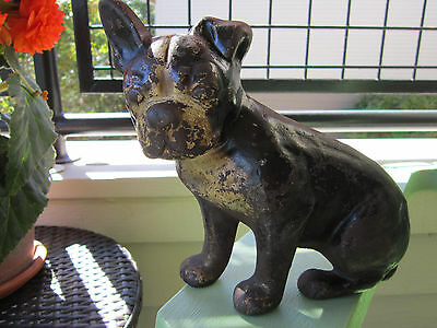 Antique Xxrare Spenser Cast Iron Sitting Boston Terrier W/ Flopped Ear Doorstop