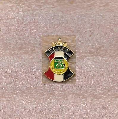 Egypt Paralympic Committee Official Pin Old #2