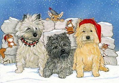 Cairn Terrier Christmas Cards : 10 Holiday Cards with Red Envelopes - ADORABLE!