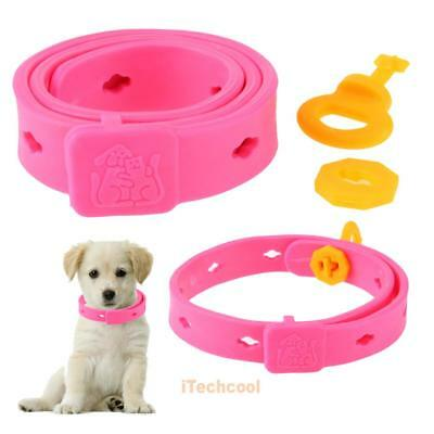 Pet Dog Collar Anti Mosquito Dogs Protection Dog Anti Flea Tick Mite Insect #T1K