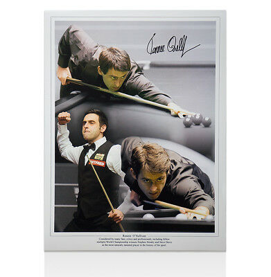 Ronnie O'Sullivan Hand Signed Photo - Montage Autograph
