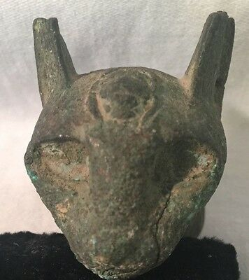 Egyptian Bronze Head of a Cat, Archaic,BC