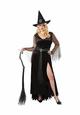 Rich Witch Womens Plus Size Costume