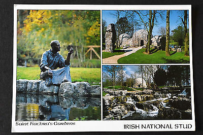 Irish Postcard ~ Kildare ~ Saint Fiachra's Gardens ~ Irish National Stud