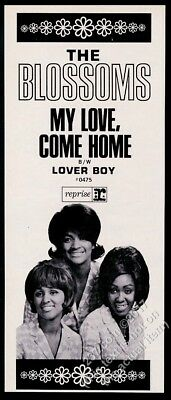 1966 The Blossoms photo My Love Come Home record release vintage trade print ad