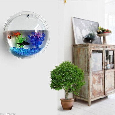 Acrylic Wall Mount Hanging Fish Bowl Aquarium Tank Beta Goldfish Hanger PlantNew