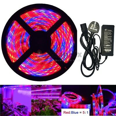 Red & Blue 5:1 Ratio 5050 LED Plant Grow Hydroponic Lighting & Power Supply DIY