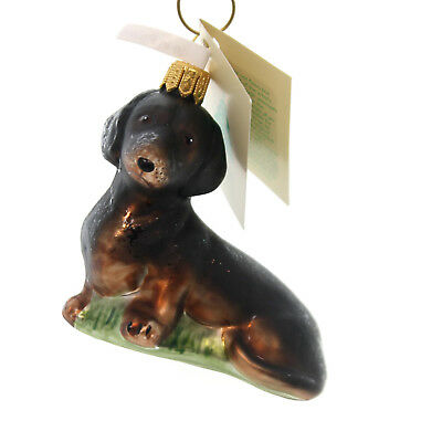 Tannebaum Treasures DACHSHUND Glass Ornament Dog Long-Bodied Ha146602