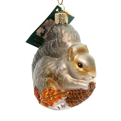 Old World Christmas HUNGRY SQUIRREL Glass Playful Bushy Tail 12277