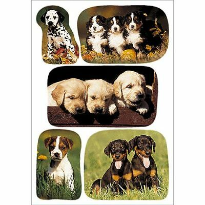 Decor-Sticker Hundewelpenfotos 3528
