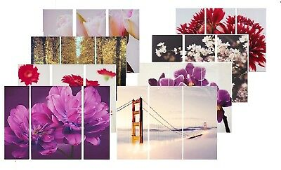 Set of 3 Triptych Canvas Wall Art Flowers Tulip Blossom Picture Home Decor Print