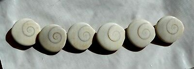 6 Gorgeous 20-21mm A+ SHIVA SHELL Domed Disc Beads - Two Sided