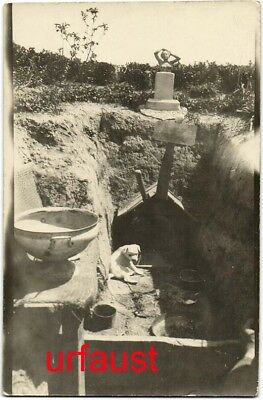 German WWI Dog Breeding in the Trenches Armentiers Flanders Photo