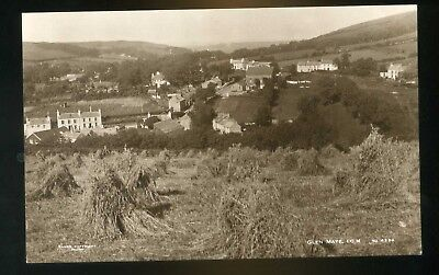 GLEN MAYE Isle of Man General View  - hay field in the foreground RP