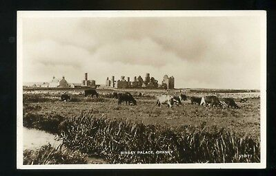 ORKNEY   Birsay Palace  with cattle in the foreground  RP