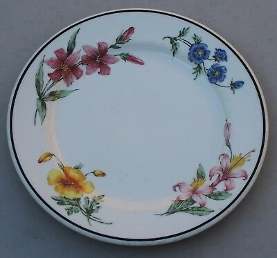 Early Southern Pacific Prairie Mountain Wildflowers Salad Plate