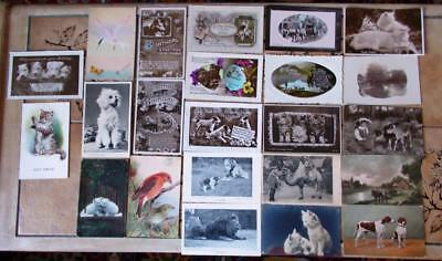 VINTAGE POSTCARDS, ANIMALS, c1910-30, DOGS,CATS,CAMEL,LION,LOT OF 23 CARDS (2)