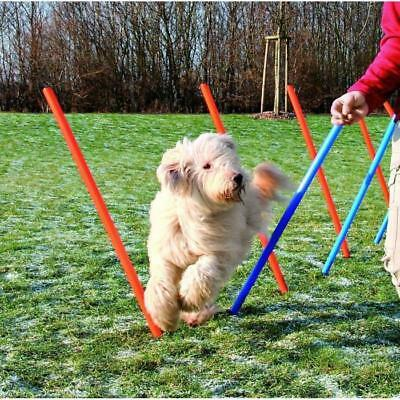 Dog Activity Slalom Agility jeu chien - Trixie