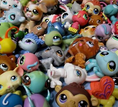 Littlest Pet Shop Lot Cat Dog Random 8 Pcs 3 LPS 5 Accessories and Gift Bag