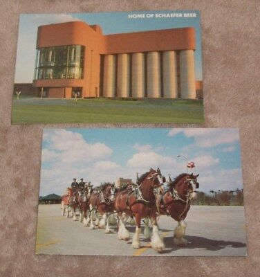 2 Two 1950s  Beer Postcards Budweiser Clydesdale Team Schaefer Lehigh Valley PA