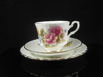 Pretty Royal Stafford Bone China Roses Trio Cup Saucer Plate