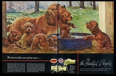 1946 Irish Setter and puppy dogs John Clymer art Chrysler car vintage print ad