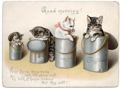 Late Victorian CAT KITTEN Christmas Greeting Card