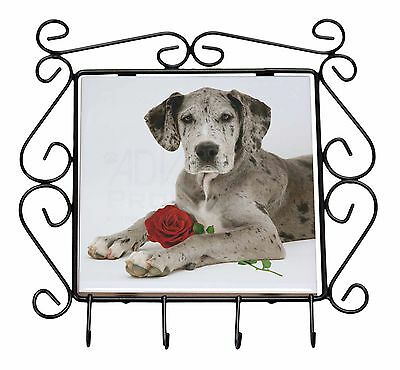 Great Dane with Red Rose Wrought Iron Key Holder Hooks Gift, AD-GD2RKH