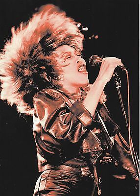 Tina Turner Close Up Photo 1985 Unique Unreleased Huge 12 Inch Tinted Exclusive