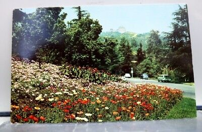 California CA Los Angeles Griffith Park Fern Dell Drive Entrance Postcard Old PC