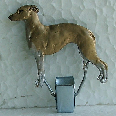 Italian Greyhound Fawn White Chest Legs Show Ring Clip Dog Breed Jewellery